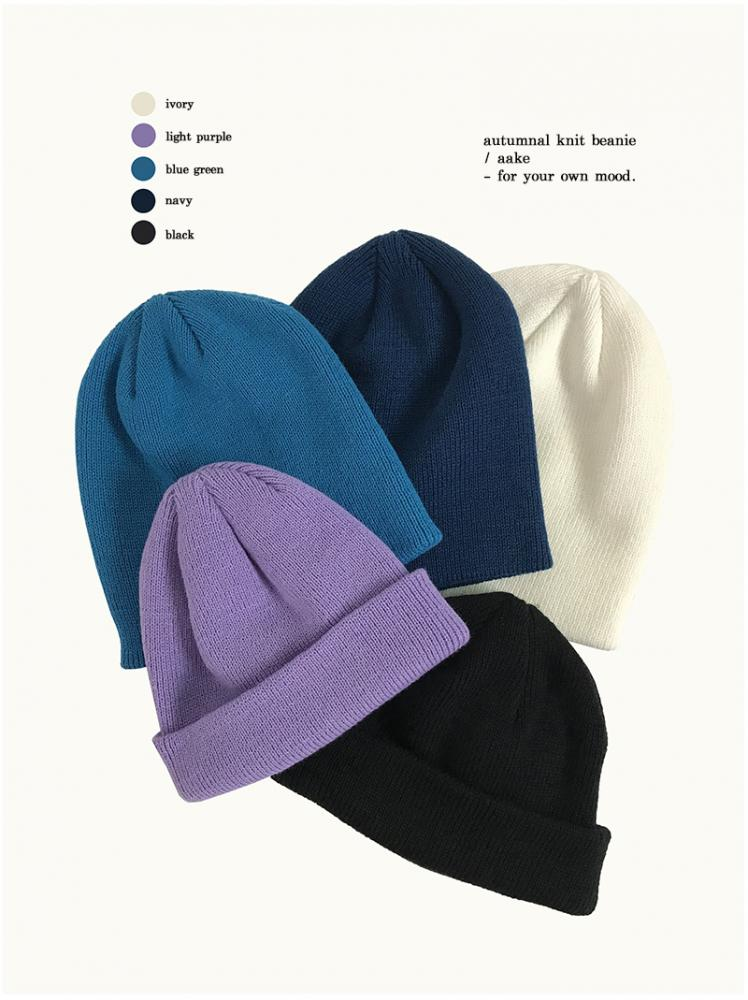 AUTUMNAL KNIT BEANIE (5color!)